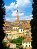 Siena Horizon. Stock Afbeelding