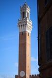 Siena, Italia Torre del Mangia Immagine Stock Libera da Diritti