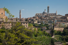Siena, Italy. Stock Photography