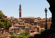 Siena Italy Royalty Free Stock Photography