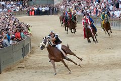 The famous horse race `Palio di Siena` royalty free stock images