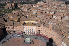 Siena, Italy. Campo Square top view Stock Images