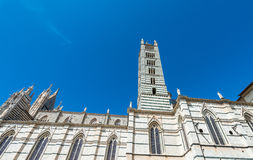 Siena, Italy. Piazza del Duomo. City Dome Stock Photography