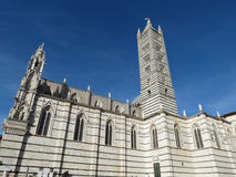 Siena, katedra Obrazy Royalty Free
