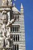 Siena kupol arkivbilder