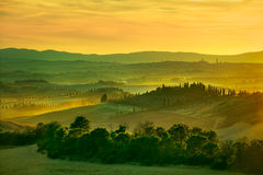 Siena, rolling hills on sunset. Rural landscape with cypress tre Stock Images