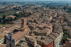 Siena Roofs View From Mangia Tower Stock Image