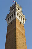 Siena's Mangia Tower in light and shade Royalty Free Stock Images