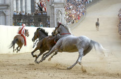Siena's palio horse race. Siena's palio, the most famous horse race in the world is celebrated twice every year, 2 of July and 16 of August stock image