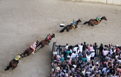 Siena's palio horse race Royalty Free Stock Images