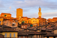 Siena sunset view Stock Image