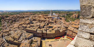 Siena tilt shift aerial view Stock Image