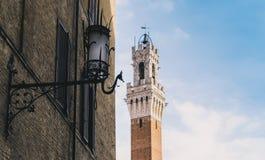 Siena, Toscana, Italia fotografia stock libera da diritti
