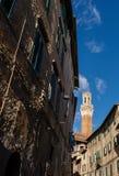 Siena Toscana Italy - Torre del Mangia Arkivfoto