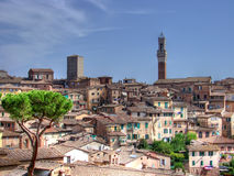 Siena Toscanië hdr Stock Afbeeldingen