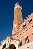Siena Tower. The tower in Siena, Italy Stock Photos