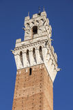 Siena town hall Stock Photography