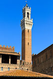 Siena, Tuscany - Famous tower - Palazzo Pubblico Royalty Free Stock Images