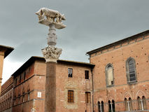 Siena wolf statue Royalty Free Stock Image