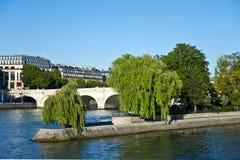 Siene rzeka w Paryż. Obraz Royalty Free