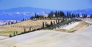 Sienese Cretes. Typical Sienese landscape known as Crete Senesi near Siena, Tuscany, Italy Stock Photo