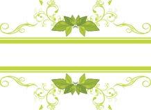 Sier frame met groene bladeren Stock Fotografie