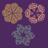 Sier rond bloemenpatroon met vele details. Stock Afbeelding