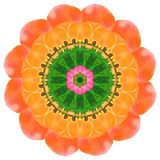 Sierpatroonmandala met bloemenelementen Stock Afbeelding