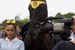 Sierpień 28, 2017: Dziewczyna daje wywiadowi przy equestrian sporta festiwalem w Ukraina, Odessa region Sierpień 28, 2017 Obraz Stock
