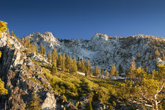 Sierra Alpine Meadow Stock Images