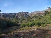 Sierra arête de Nevada dans des araucarias de las Photographie stock libre de droits