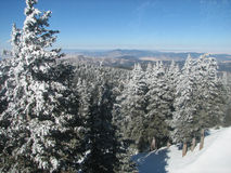 Sierra Blanca of the Southern Rockies. View of the Southern Rockies from on top of Sierra Blanca at Ski Apache near Ruidoso, New Mexico Stock Photo