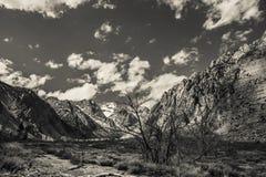 Sierra Box Canyon Stock Photo