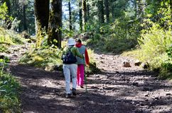 Two women hiking to the Sierra Chincua Monarch Butterfly Sanctuary