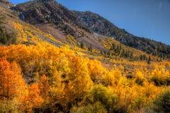 Sierra couleur d'automne Image libre de droits