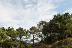 Sierra de Espada Royalty Free Stock Photography