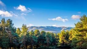 Sierra de Gredos, province of Avila, Castile Leon. Royalty Free Stock Photos
