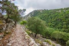 Sierra de Tramuntana Mountains, Mallorca, Spain Stock Photos
