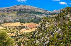 Sierra de Tramuntana view from Lluc Stock Images
