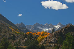 Sierra Fall Foliage. This image was taken in the Calfirornia Sierra Stock Images