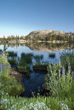 Sierra Lake Reflection Stock Image