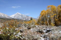 Sierra montagne e colore di caduta Immagine Stock Libera da Diritti