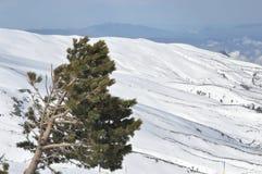 Sierra Nevada berg i sydliga Spanien Royaltyfri Fotografi