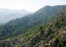 Sierra Nevada-Berge Stockbilder