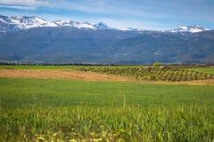 Sierra nevada mountain range spain Royalty Free Stock Photo