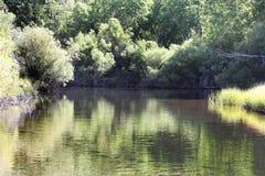 Sierra Nevada Mountain River. A beautiful river in the Sierra Nevada Mountains Stock Image
