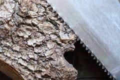Sierra para metales en la madera foto de archivo