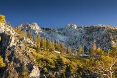 Sierra prato alpino Immagini Stock