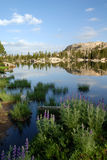 Sierra réflexion de lac nevada Photos libres de droits