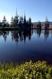 sierra refleksji nad jeziorem Zdjęcie Royalty Free